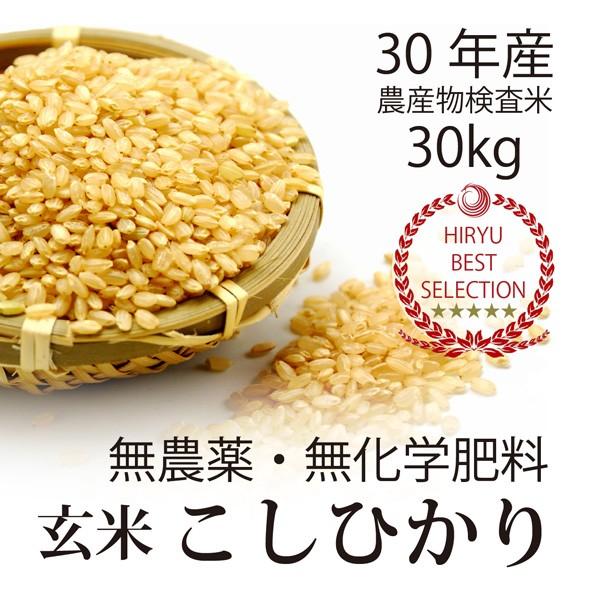 飛竜コシヒカリ玄米30kg【酵素玄米に最適】29年産...