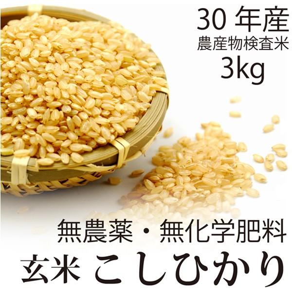 【30年産 新米】飛竜コシヒカリ玄米 3kg 無農薬・...