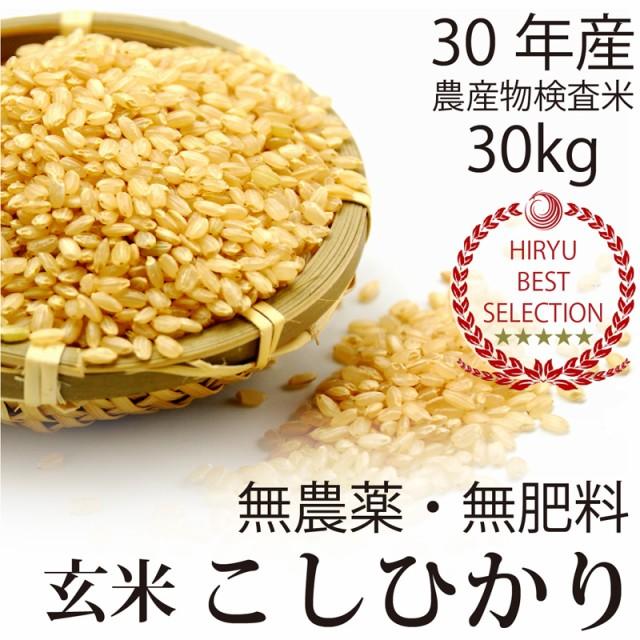 【30年産 新米】飛竜コシヒカリ玄米 30kg 自然栽...