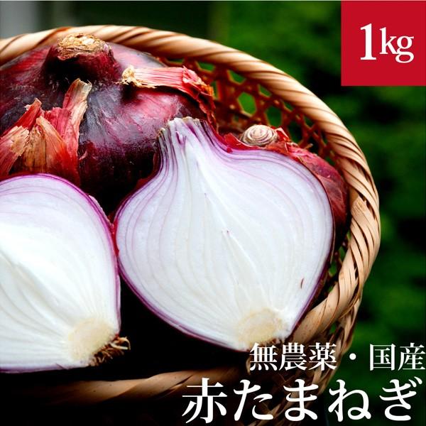 赤玉ねぎ 1kg 無農薬・国産 国内産・無化学肥料 ...