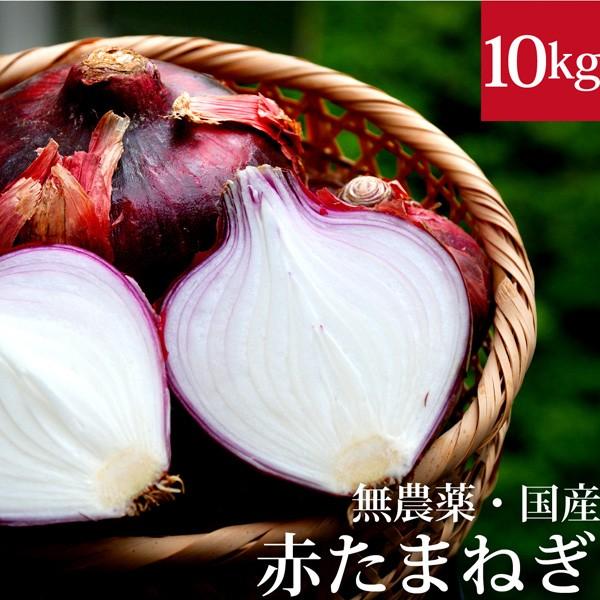 赤玉ねぎ 10kg 無農薬・国産 国内産・無化学肥料 ...