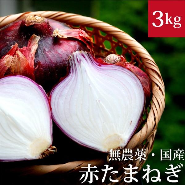 赤玉ねぎ 3kg 無農薬・国産 国内産・無化学肥料 ...