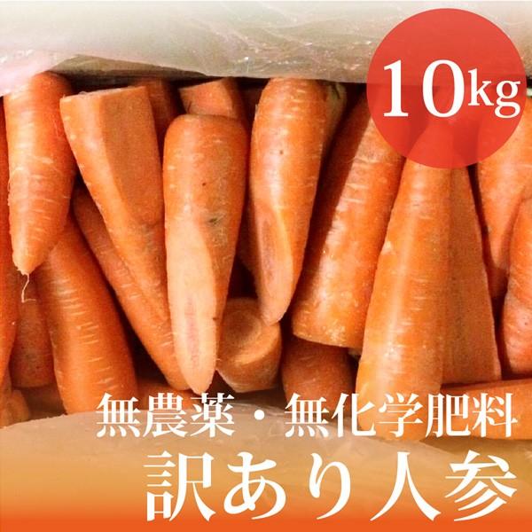 無農薬・無化学肥料 訳あり 人参 10kg 北海道産