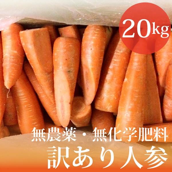 無農薬・無化学肥料 訳あり 人参 20kg 北海道産