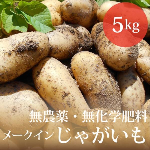 じゃがいも メークイン 5kg 無農薬・無化学肥料 ...