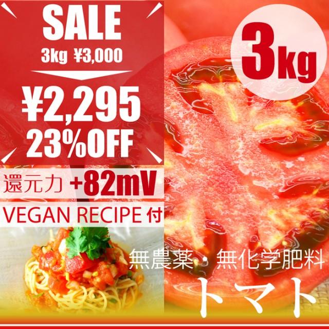 トマト 3kg 千葉県産・無農薬・無化学肥料・還元...