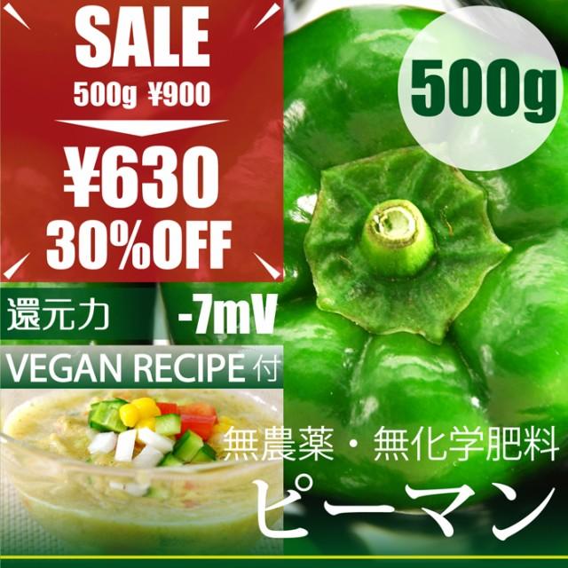 ピーマン 500g (無農薬・無肥料)千葉県産 還元力-...