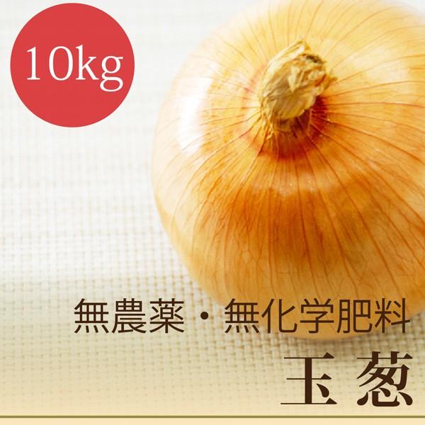 玉葱 10kg 無農薬・無化学肥料 北海道産 玉ねぎ