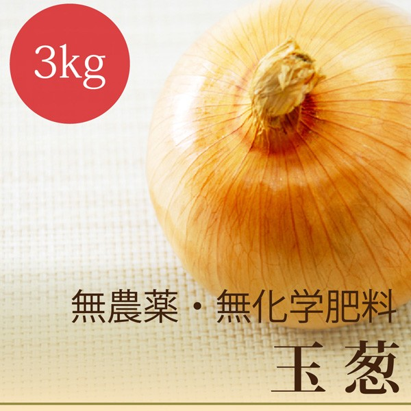 玉葱 3kg 無農薬・無化学肥料 北海道産 玉ねぎ