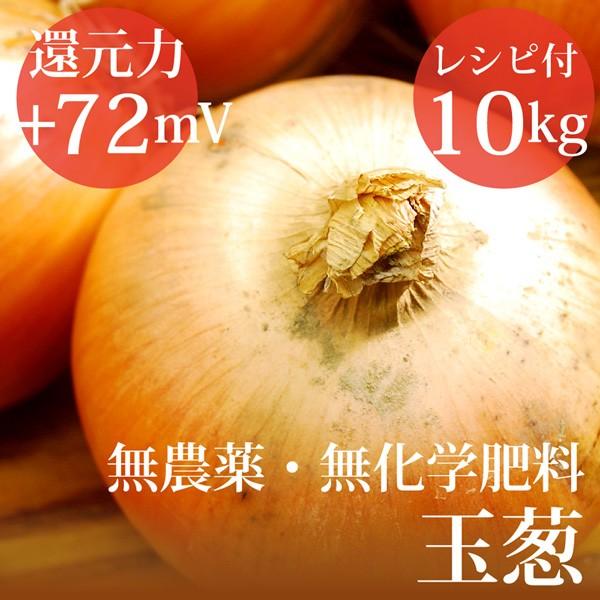 玉ねぎ 10kg ヴィーガンレシピ付き 無農薬・無化...