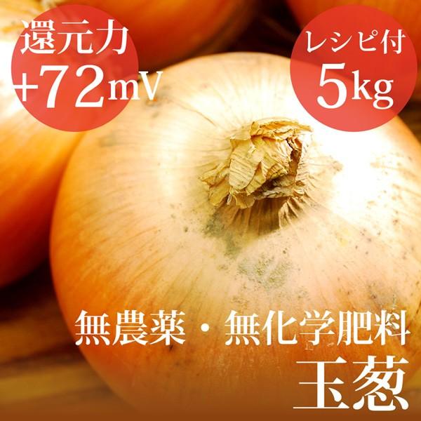 玉ねぎ 5kg ヴィーガンレシピ付き 無農薬・無化学...