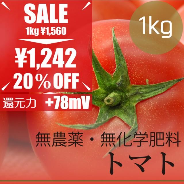 今だけ20% OFF  トマト1kg  無農薬・無化学肥料・...