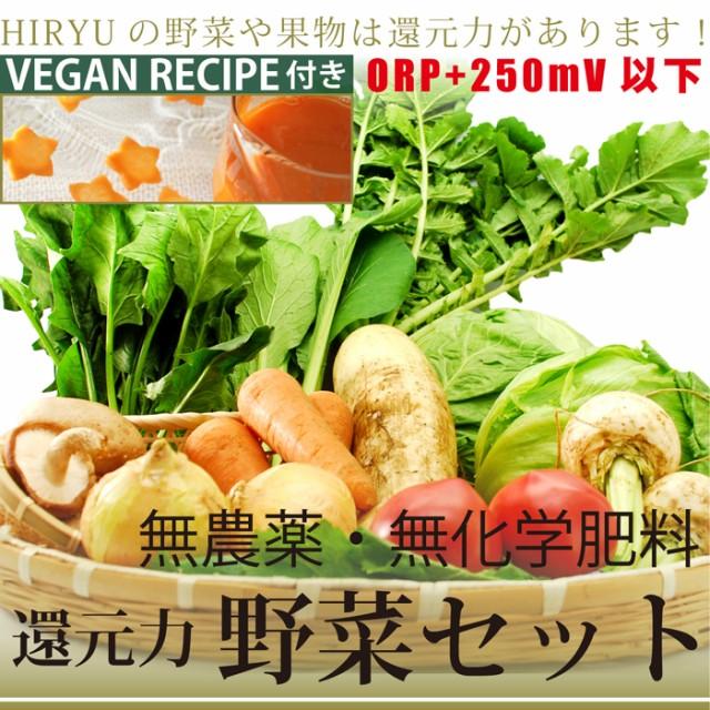 無農薬さらに無肥料或いは無化学肥料(10品)野菜...