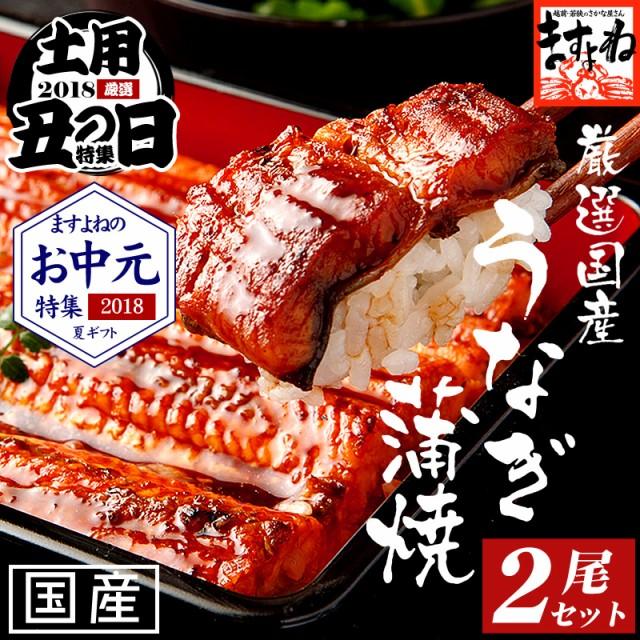 ギフト 国産特大うなぎ蒲焼2本セット 特大蒲焼き1...