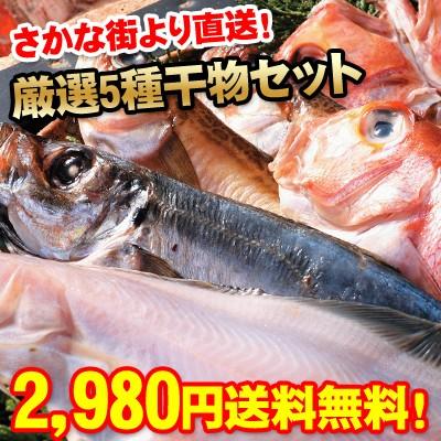 日本海さかな街実店舗限定  人気の一夜干し 5種セ...