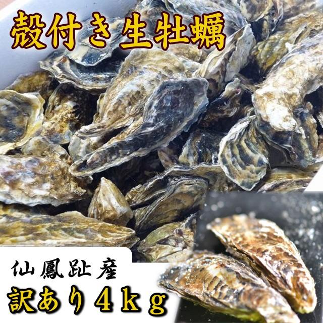 訳あり 北海道仙鳳趾産「殻付き生牡蠣」4kg詰(...