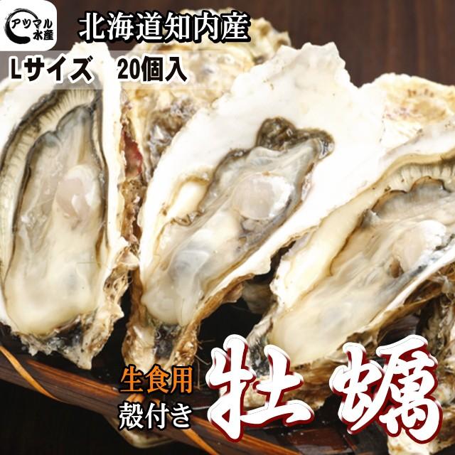 道南知内産 殻付き生牡蠣 Lサイズ(1個140〜190...