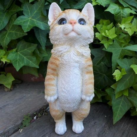 猫の置物 子猫立ポーズきおつけ Y75QY キャ...