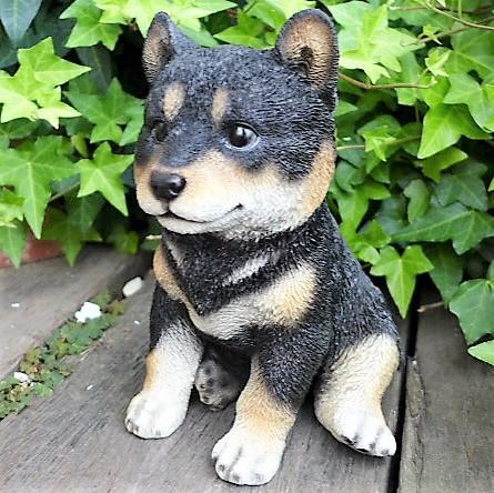 犬の置物 黒柴犬 子犬 13184 いぬ イヌ 動物...