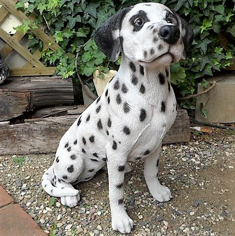 犬の置物 ダルメシアン 85QY いぬ イヌ 動物 ...