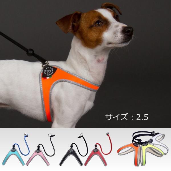 犬 ハーネス 小型犬用 トレ・ポンティ Liberta(...