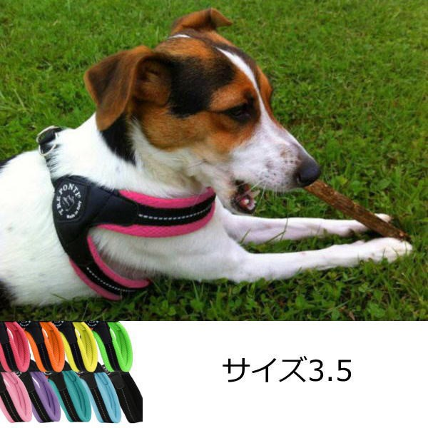犬 ハーネス 小型犬用 トレ・ポンティ Fibbia So...