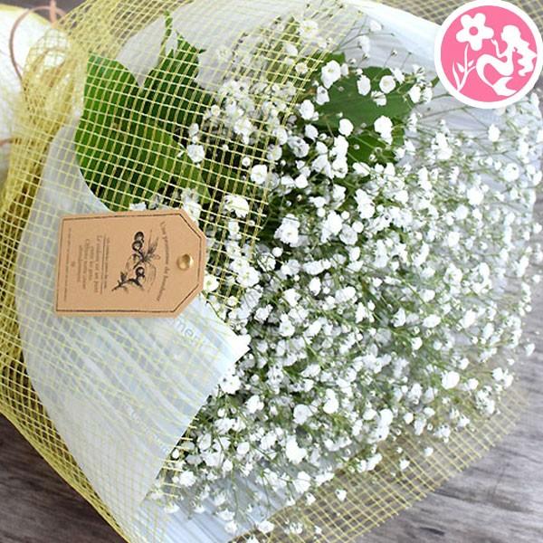 かすみ草 カスミソウ 花束 花 誕生日 結婚祝い お...