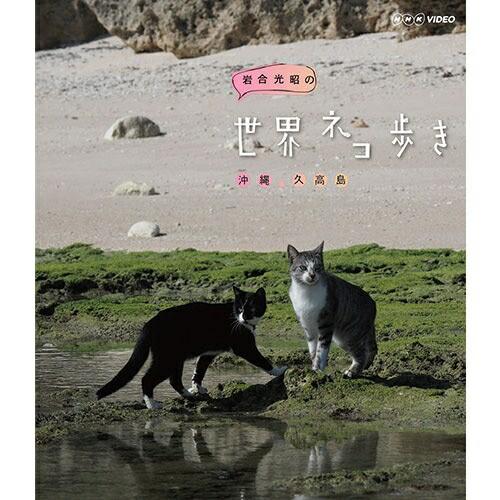 岩合光昭の世界ネコ歩き 沖縄 久高島 ブルーレイ ...