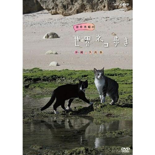岩合光昭の世界ネコ歩き 沖縄 久高島 DVD NHKDVD ...