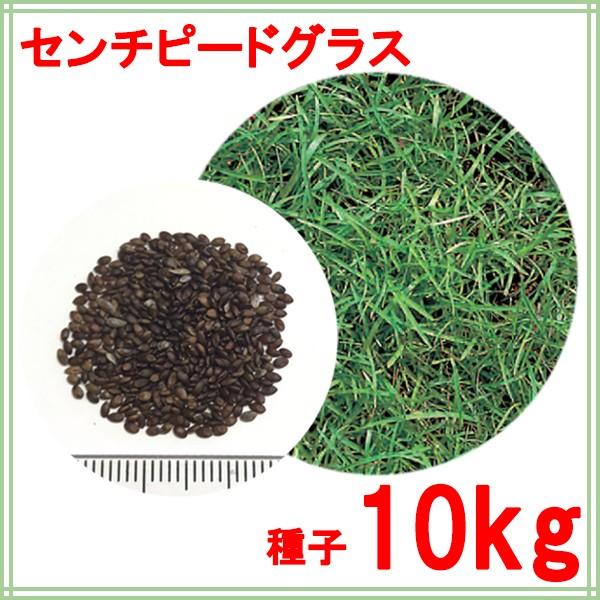種子 センチピードグラス 10kg