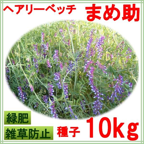 種子 ヘアリーベッチ まめ助 10kg
