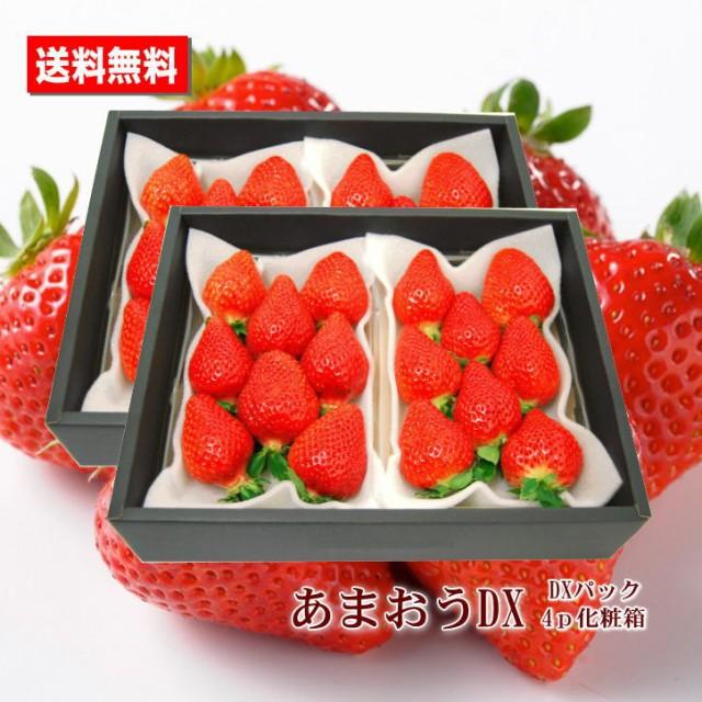 いちご 送料無料 あまおう 福岡県産 DX 4パック ...