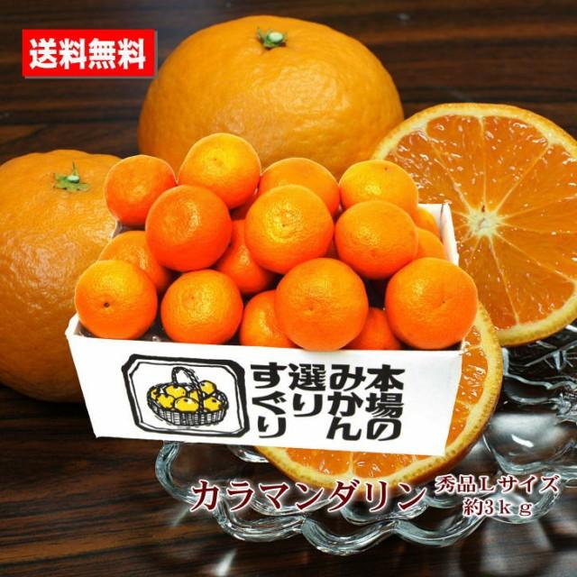 送料無料 カラマンダリン 三重県熊野古道 柑橘 春...