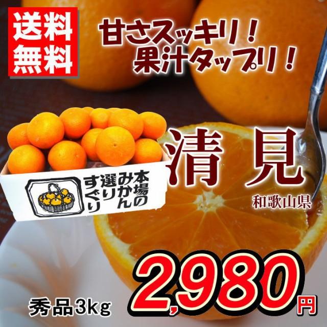 送料無料 清見オレンジ 和歌山県産 柑橘 秀品 約3...