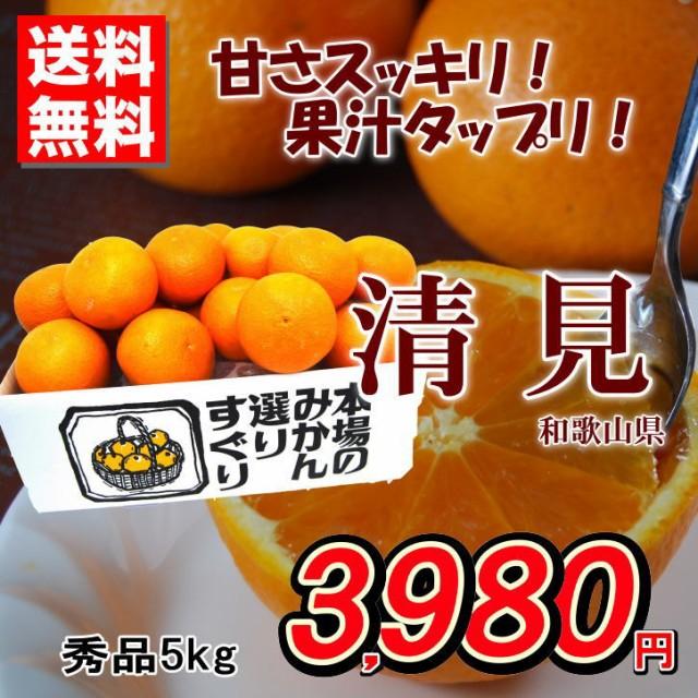送料無料 清見オレンジ 和歌山県産 柑橘 秀品 約5...