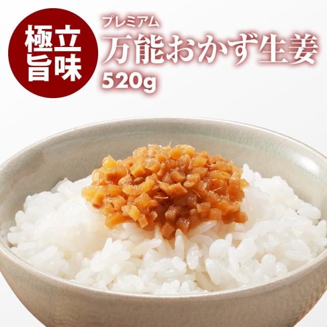 国産 プレミアム 万能おかず生姜 520g(130g×4)...