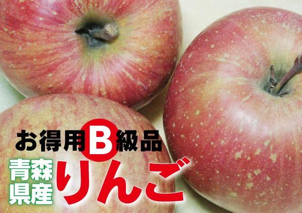 青森県産【B級品・ふじ・5kg(5キロ) ダンボール...