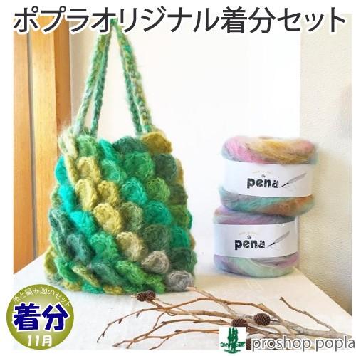 【秋冬】うろこのバッグ【中級者】【編み物キット...
