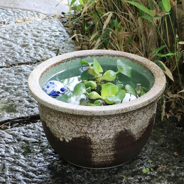 メダカ鉢 金魚鉢 睡蓮鉢 水鉢 手水鉢 すいれん鉢 ...