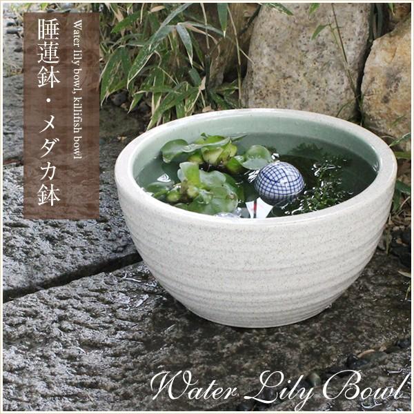 陶器 10号白カスミ水鉢すいれん鉢 メダカ鉢、 金...