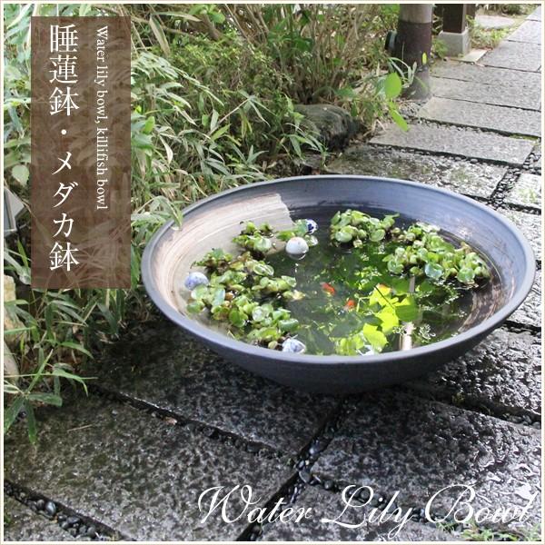 信楽焼 30号黒ハケメ浅型水鉢 メダカ鉢、金魚鉢に...