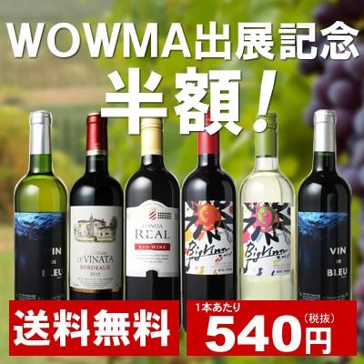 【送料無料】ワインセット 家飲み ワイン 6本 セ...