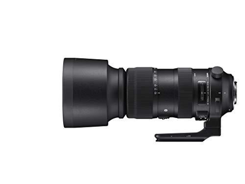 SIGMA 超望遠ズームレンズ 60-600mm F4.5-6.3 DG ...