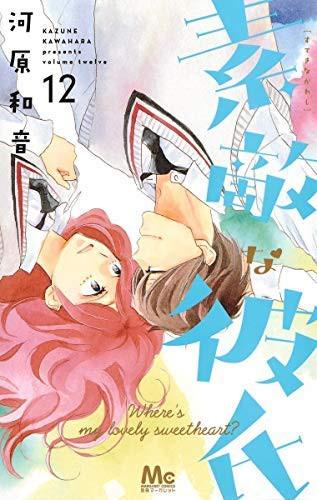 [5%還元]素敵な彼氏 コミック 1-12巻セット(中...