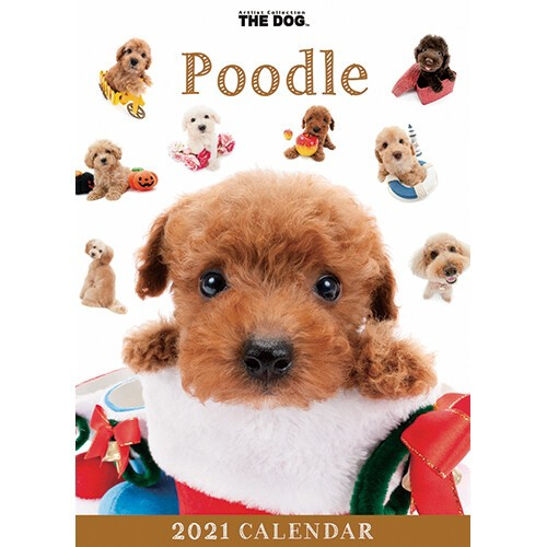 わくわく製作所 カレンダー 2021年THE DOG卓上カ...