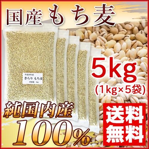 国産 もち麦 5kg (純国内産10割) [送料無料]