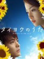 タイヨウのうた DVD-BOX(中古品)