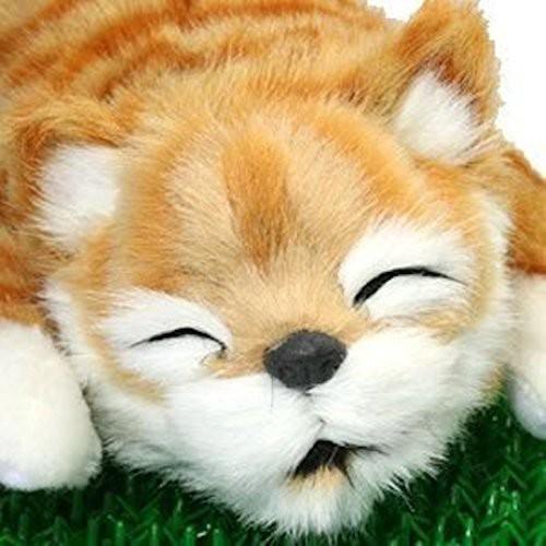 笑い転げる猫 イエロー(未使用品)