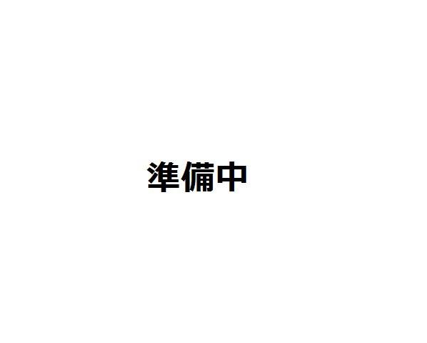 スケーター/PEN8/【ふわっと盛り付け】1段ランチ...