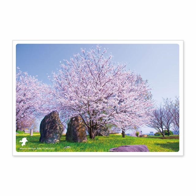 日本の絶景ポストカード 〜春〜 みなと100年公園/...